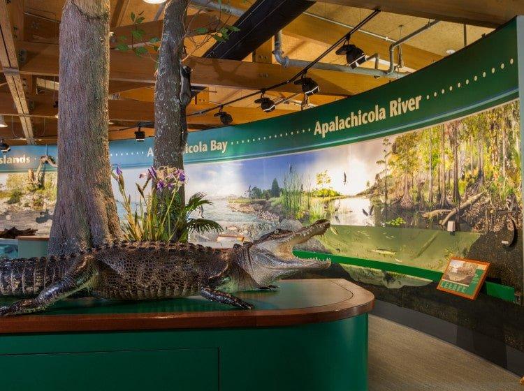 Apalachicola National Estuarine Research Reserve Nature Center