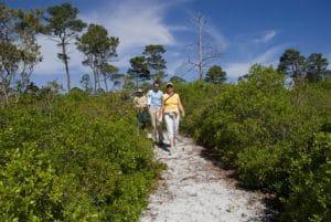 Hiking on the Forgotten Coast
