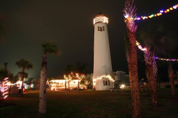 Palm Tree Lighting on St. George Island