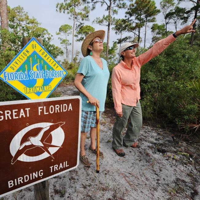 Exploring Nature Trails in Carrabelle Florida