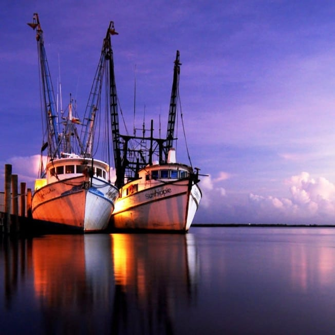 Shrimp Boats Docked in Apalachicola Florida