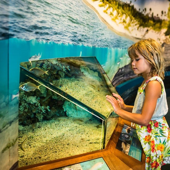 Girl exploring the Apalachicola National Estuarine Research Reserve Nature Center