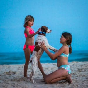Two girls playing with dog on the beach at St. George Island FL