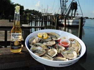 Fresh Forgotten Coast Oysters