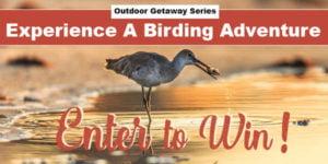 Birding Adventure Getaway 2021